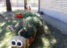 Уређење школског дворишта